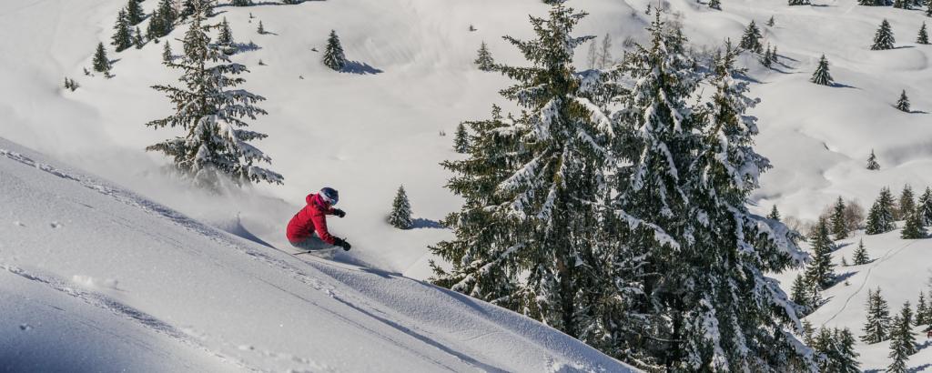 Ski holidays 2021